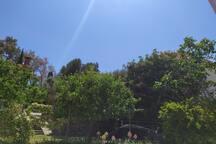 Neuf, lumineux, jolie terrasse, plage a pied: 400m
