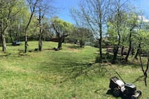 Vista sul parco