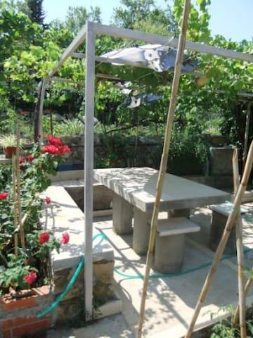 Terrace/garden  in summer