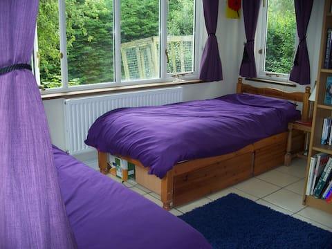 Quiet room in Rhayader - no shared facilities