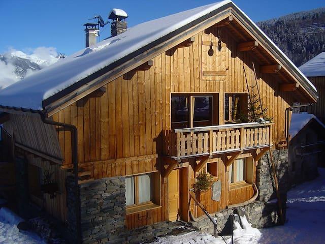 Luxury chalet with sauna, ski back possible