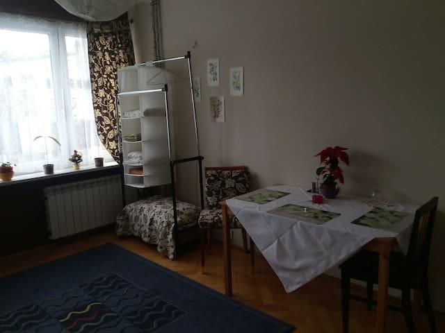 Przestrzenny pokoj w centrum historycznej Pragi