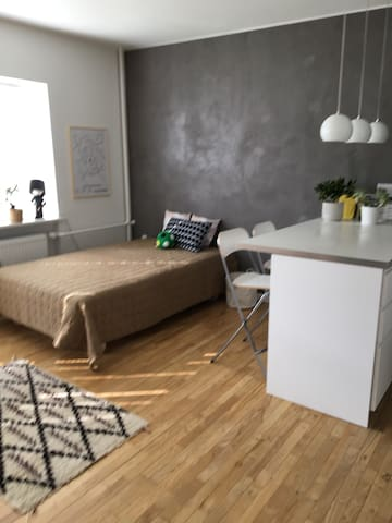 Cozy apartment only 9 km from Copenhagen City