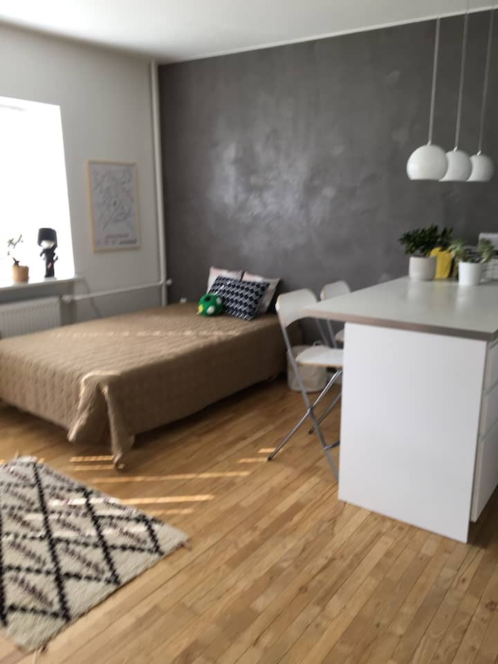 Cozy apartment only 9 km from Copenhagen City