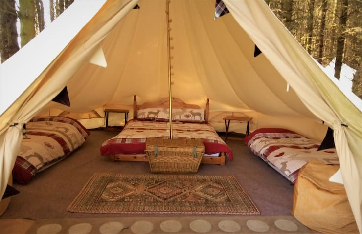 The Willows Glamping at Birkenhill Farm Fordyce