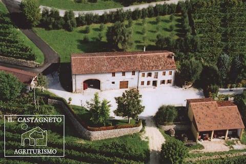 Monolocale Alba ,Il Castagneto,  Colli Euganei