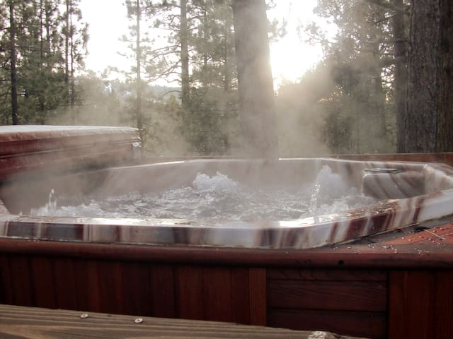 Awesome woodsy cabin. Hot tub. sleeps 10