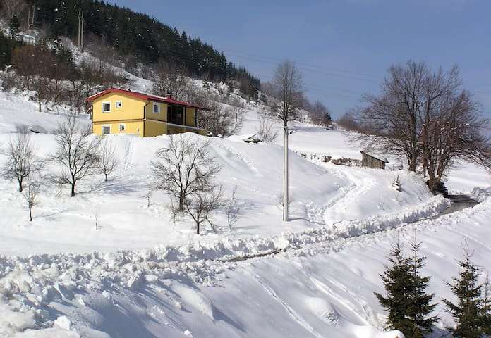 Cosy rustic guest house in the beautiful nature - Vrbovsko