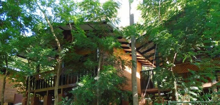 Hotel Cabinas La Playa Avellanas -Bungalow 6