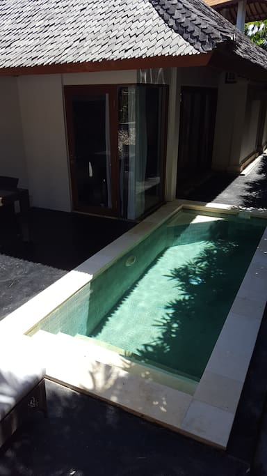 Private Lap Pool and Terrace