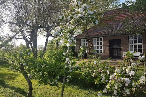 Beautiful Farmhouse in Veere with Open Fireplace