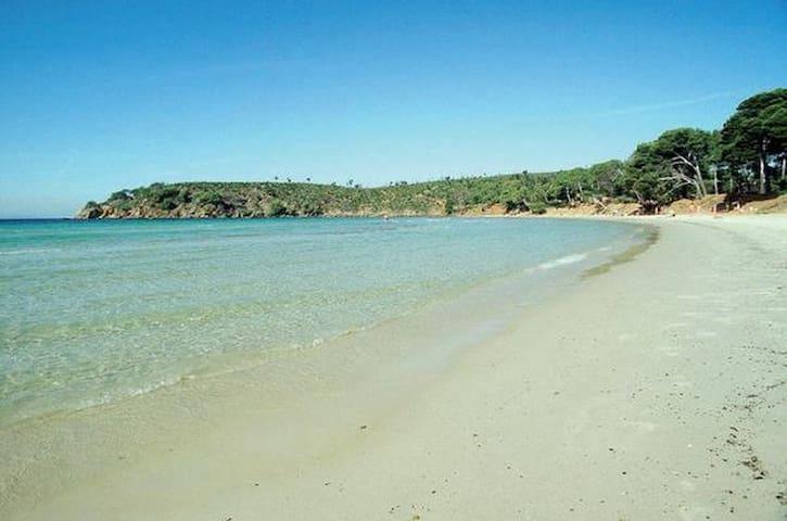Coquet t2 proches des plages - La Londe-les-Maures - Apartment
