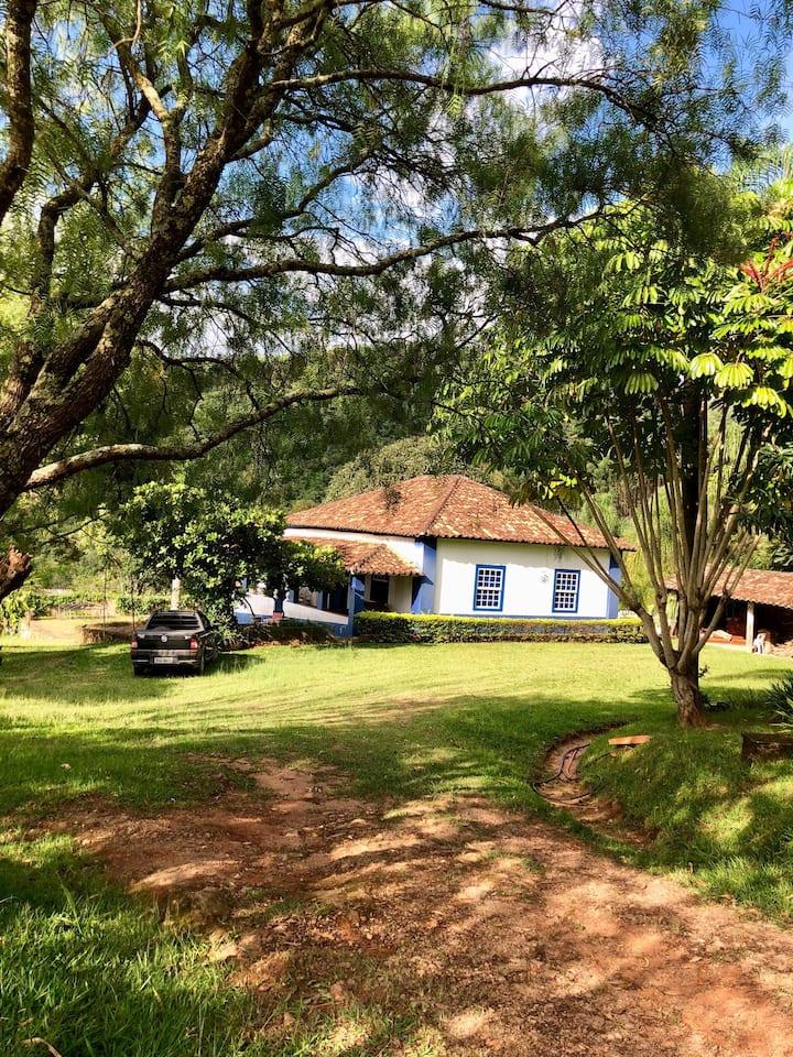 Old Little Coffee Farm-Holy J.