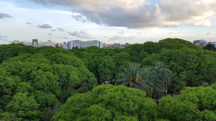 SAN TELMO FRIENDLY PARK VIEW
