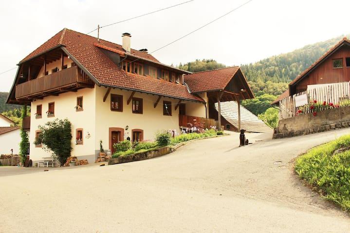 Schönerei  Ferien- und Freizeithof - Kleines Wiesental - Apartamento