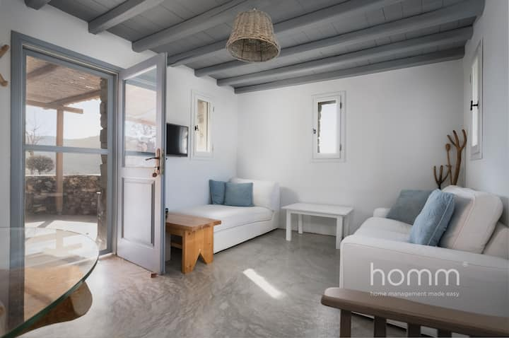 Serifos Kalo Ampeli  homm Unique Seafront Villa