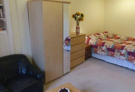 double room, large, sunny, top floor, central flat - Edimburgo - Appartamento