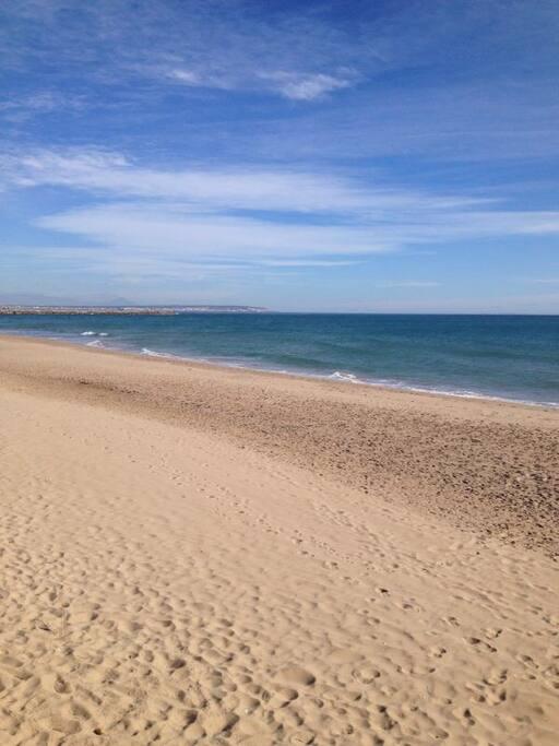 Playa de Guardamar. Accedo desde el apartamento a través de una hermosa pinada entre dunas.