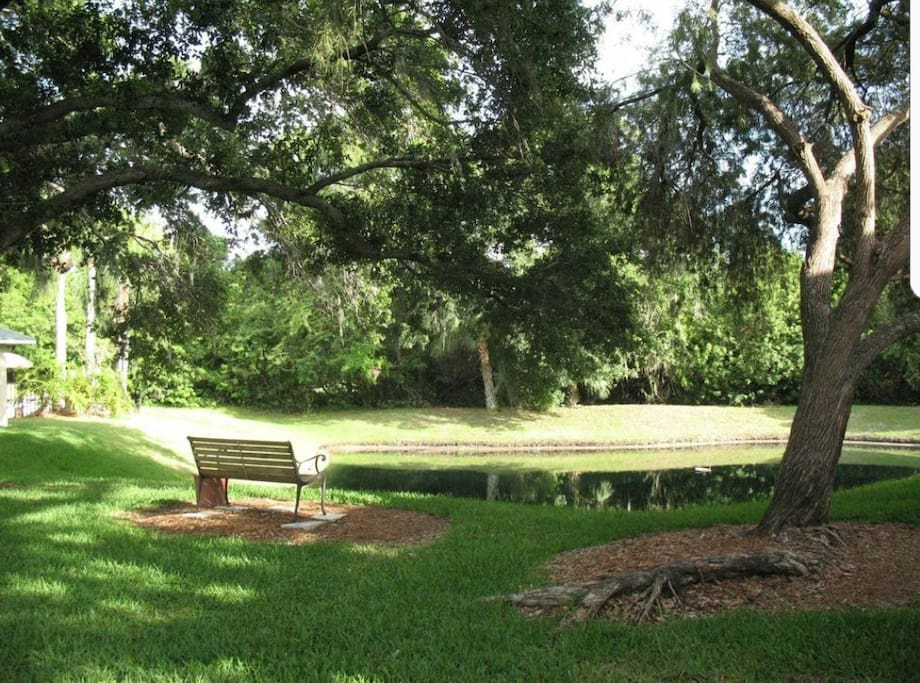 Outdoor area within the Condominium complex