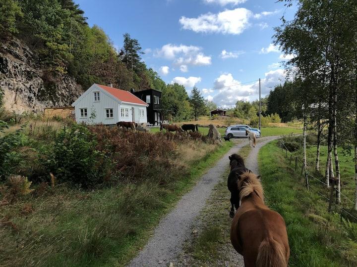 Vestlund Hus bygd 1820   Quiet area