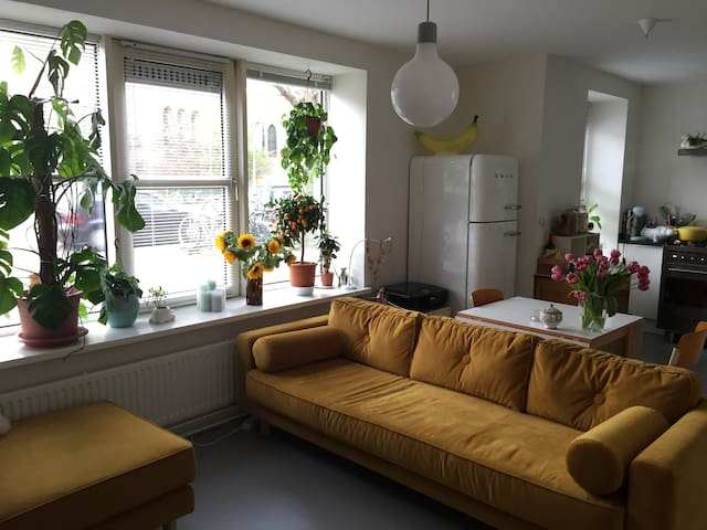 Comfy room in the popular neighbourhood de Pijp - Amsterdam - Huis