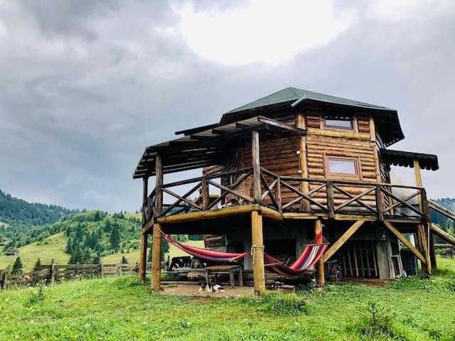 The hammock cottage