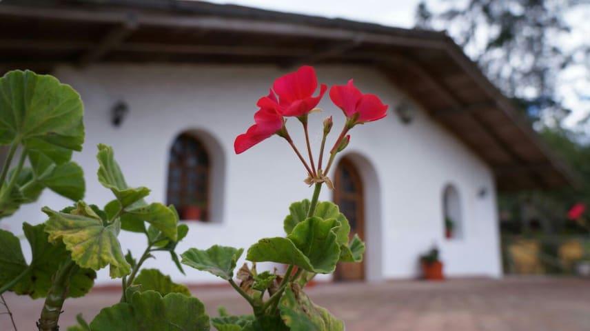 Quinta Santa Lucía chachimbiro urcuqui