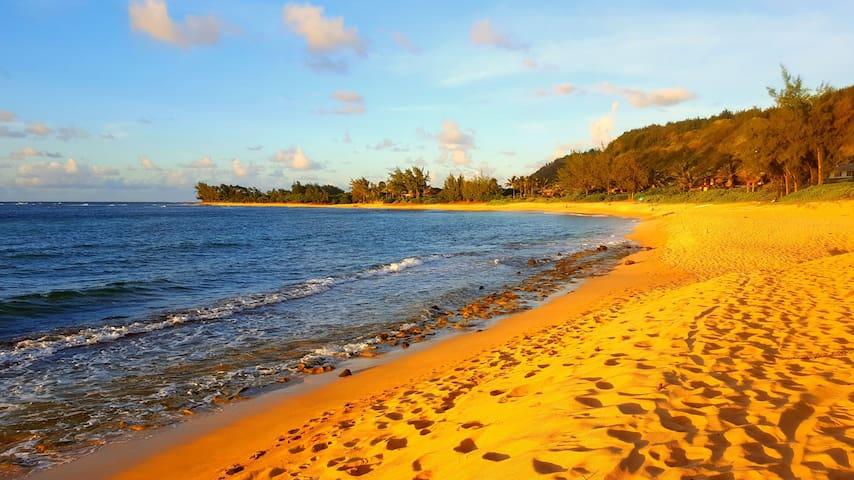 Cozy Beach Retreat on North Shore of Oahu