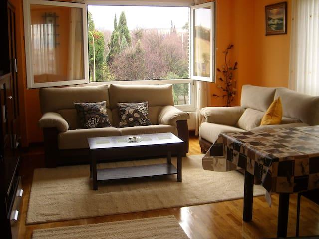 Amplio  y comodo con garaje e  Internet - Avilés - Leilighet