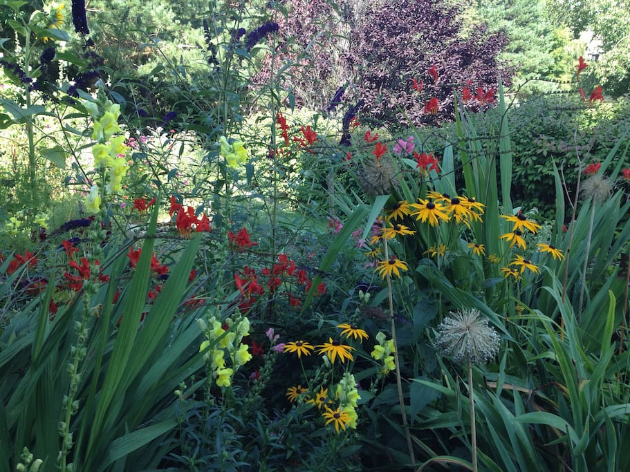 Sit back and enjoy the butterflies and hummingbirds that make our gardens their home!