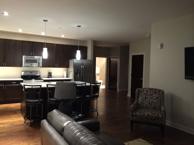 Luxury Condo in the Haymarket - Lincoln - 公寓