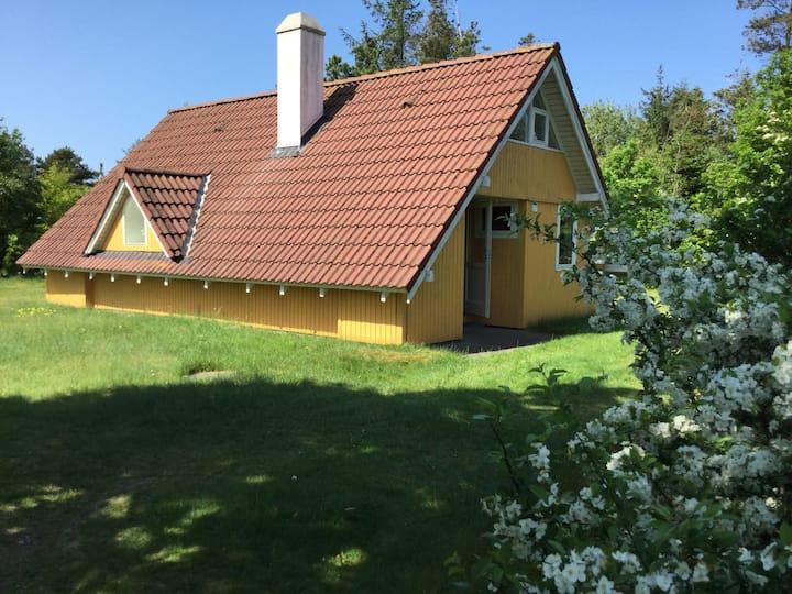 Sommerhus i skøn natur. Tæt på Ringkøbing Fjord.
