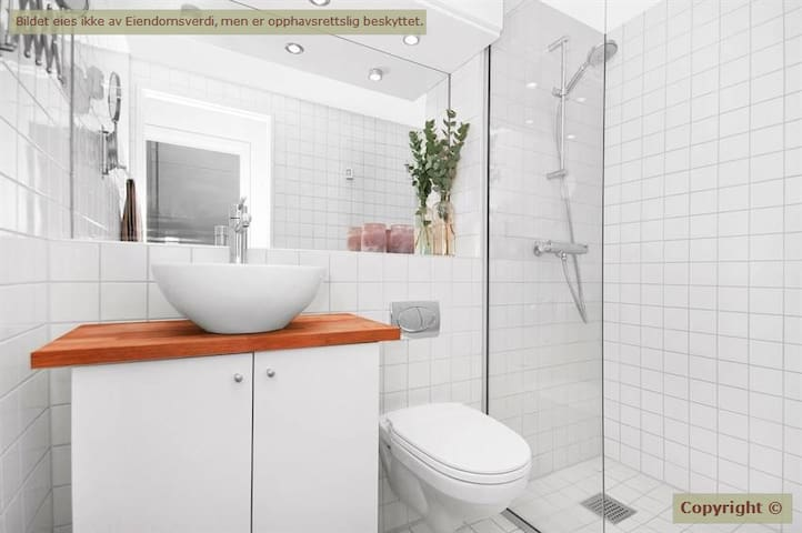 Studio apartment in the middle of Oslo city center - Oslo - Departamento