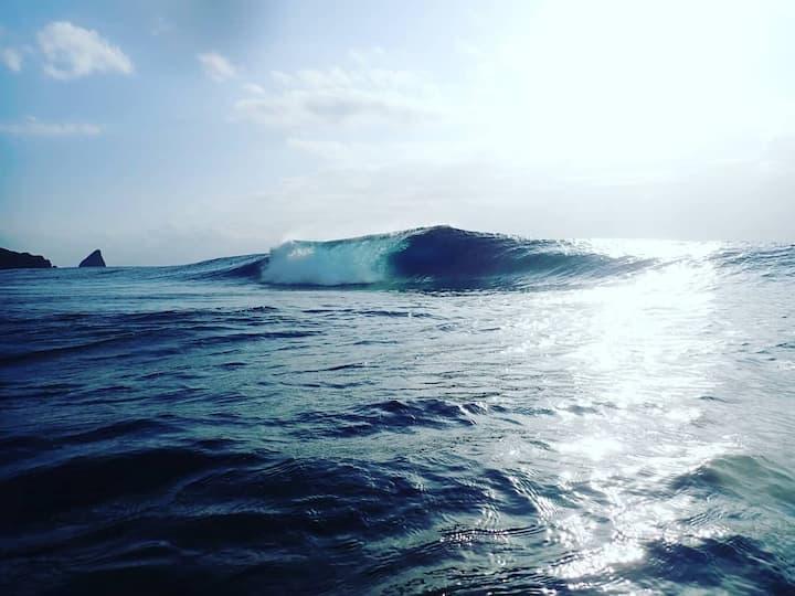 KIA ORA SURF HOUSE and IRIE MUM COFFEE SHOP