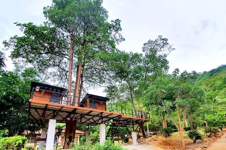 Chef Treehouses On The Mountains: fresh air, trees