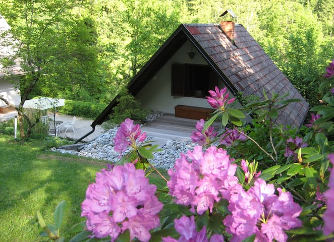 Chalet ISKARETREAT - Ig - Hus