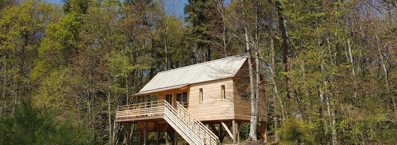 La Grande Cabane du Perche et son SPA - Saint-Mard-de-Réno - Cottage