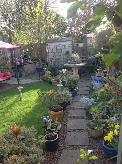 View of garden from Conservatory