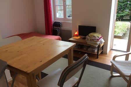 Studio près de la place saint pierre lumineux - Apartament