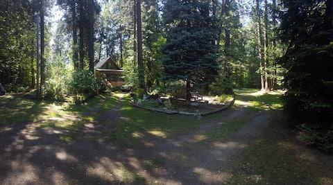 Darling Treasure Creek Cabin
