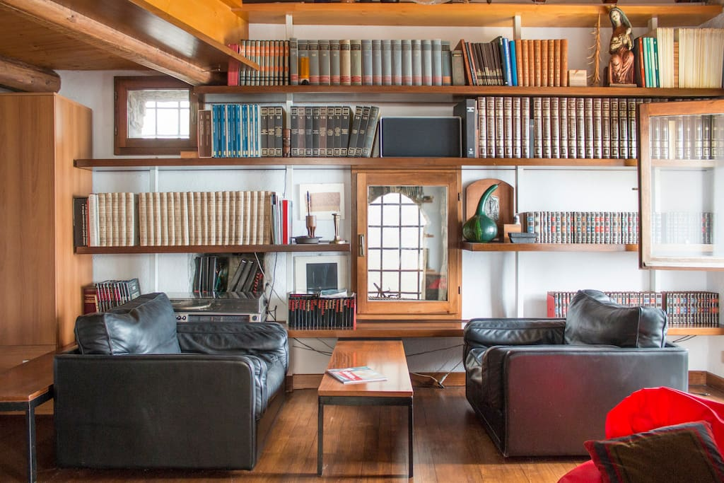 Art books on the shelves can be consulted