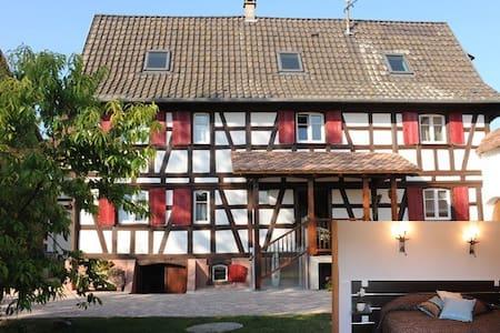 Le petit Schelishans : Chambre Hans Arp - Oberschaeffolsheim - Pensió