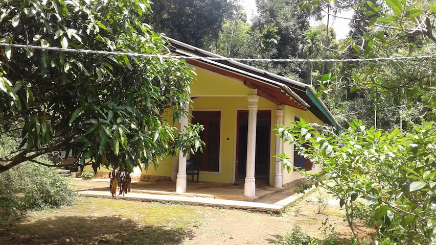Aluthgedara villa