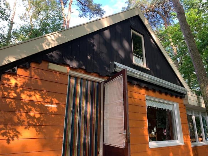 De Koolmees: oma's zomerhuisje aan de Buurserbeek