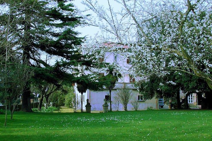 Villa gli Archi con piscina Tuscany,vicina al lago - Terontola - Apartment