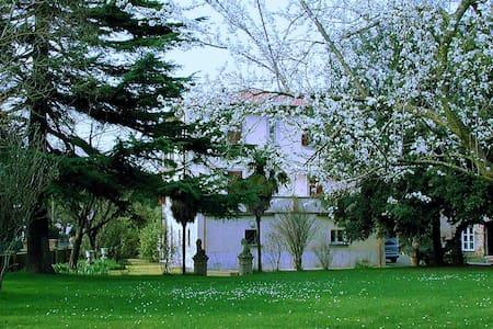 Villa gli Archi con piscina Tuscany,vicina al lago - Terontola - Huoneisto