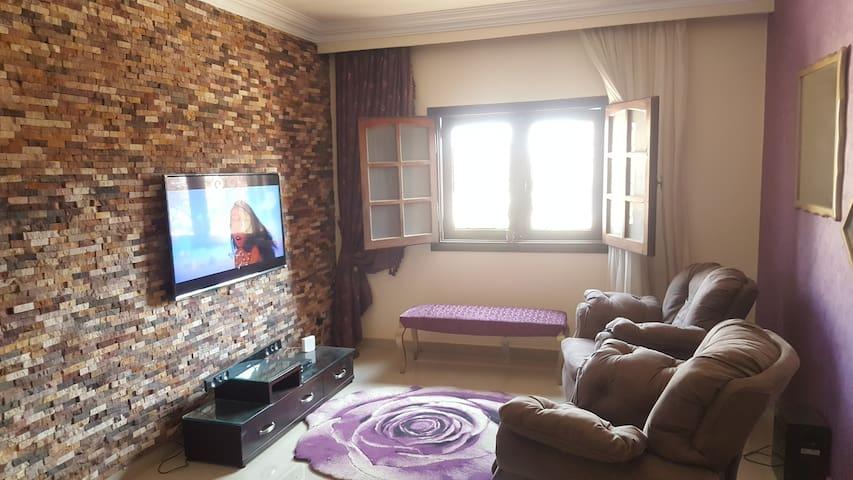 Cozy apartment + free pickup.