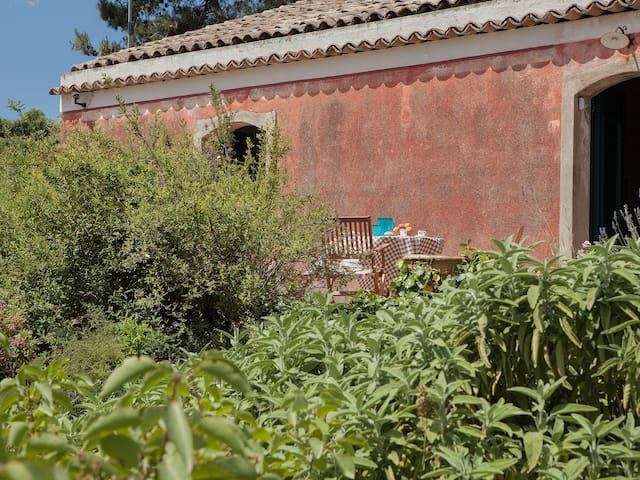 COUNTRY HOUSE BETWEEN ETNA AND THE SEA - Mascali