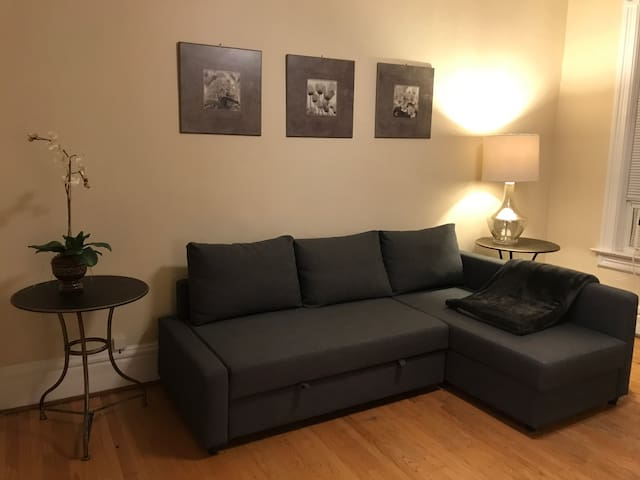 *Lincoln Park* 3 Bedroom Chicago Coach House for 8