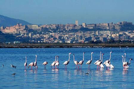 Riservata Villetta fra Mare&Montagn - Capoterra